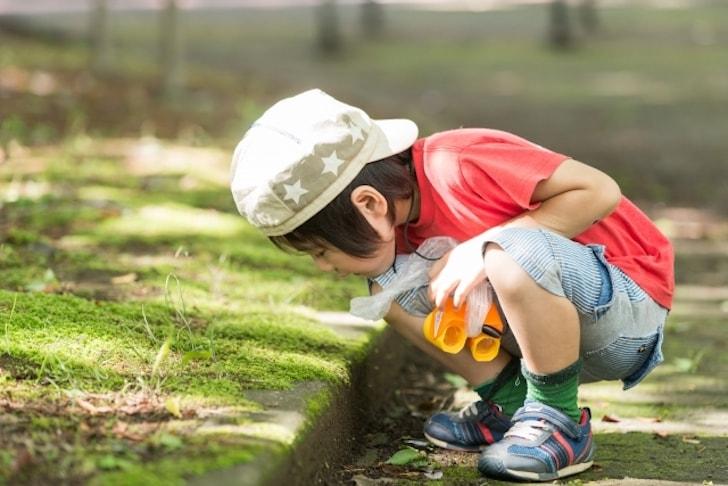 子どもをうまくまとめられない保育士の悩み